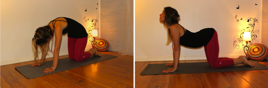 Le chat ; dos rond, dos creux, cet exercice renforce l'utérus, et soulage le bas du dos. Inspirez regardez vers le ciel, creusez le dos, expirez arrondissez.
